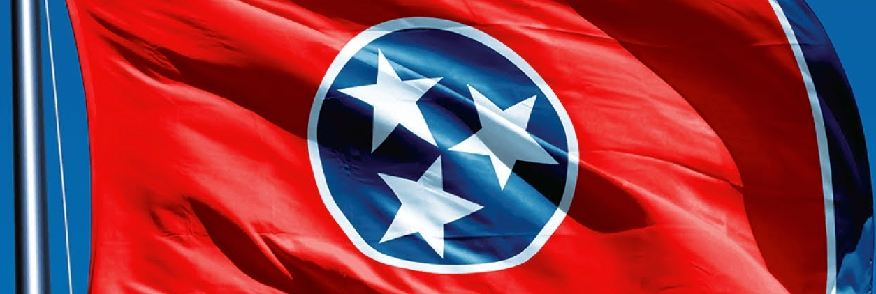 Tennessee Minister Ordination Laws (Image)